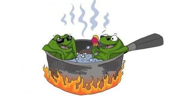 Gdzie jest salami albo gotowanie żaby (tekst, który nie powinien był powstać)